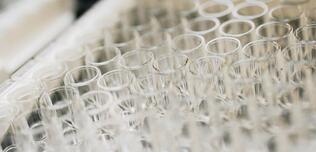 Svar-Life-Science-close-up-of-clear-assay-plate-wells