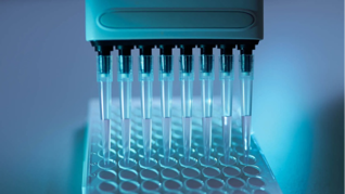 Svar-Life-Science-iLite-cell-based-reporter-gene-assays-being-applied-with-multipipette-onto-assay-plate-1-1-1